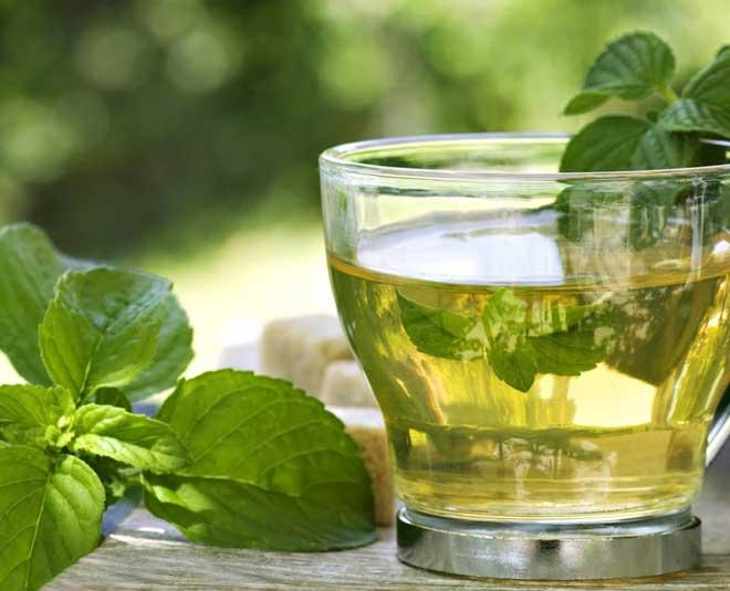 peppermint tea side effectsm