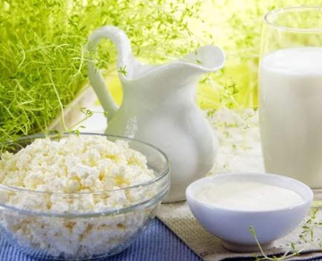 probiotics food main