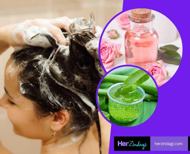 shampoo aloe vera rose water main
