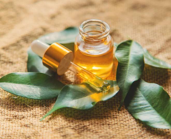 tea tree oil www.worldcreativities.com