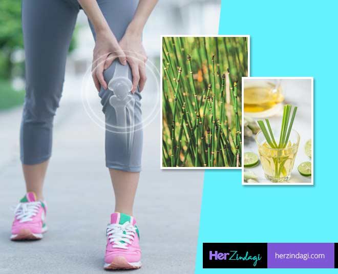 Herbs That Will Strengthen Your Bones