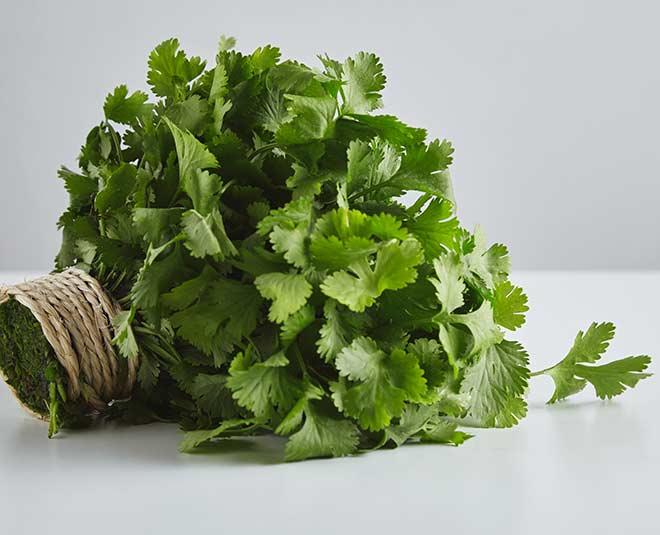 coriander leaves benefits main