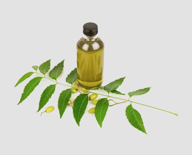 homemade neem oil Main