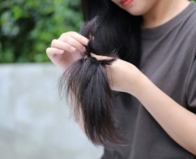 ratanjot benefits for hair tips new
