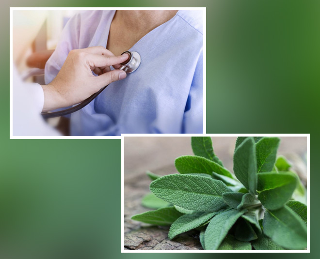 sage health benefits tips