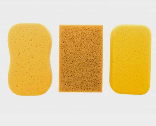 sponge uses main