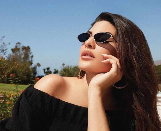 sunglasses frame
