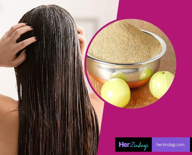 amla powder benefits for hair