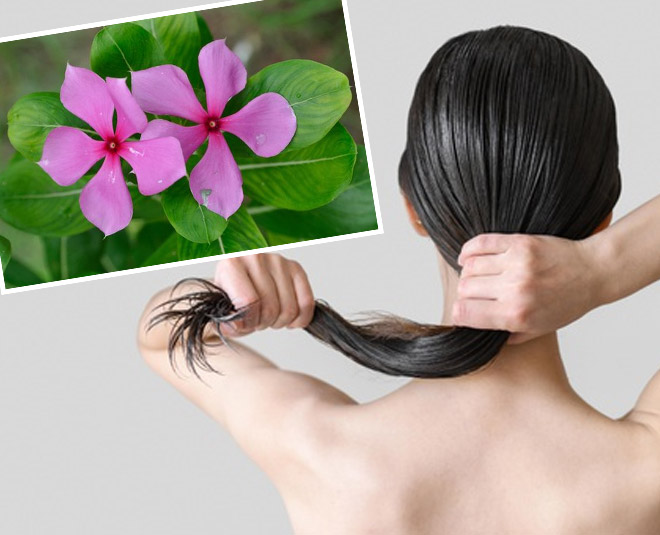 flower for damage hair