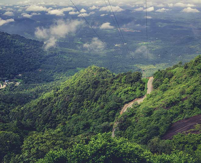 mysterious forests in india know