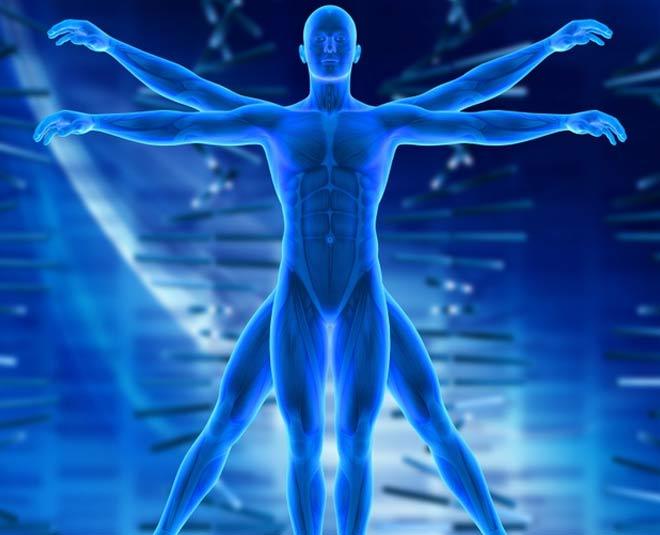 strange facts about human bodymain