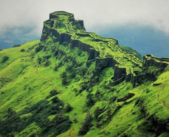 torna and prachandagad fort pune