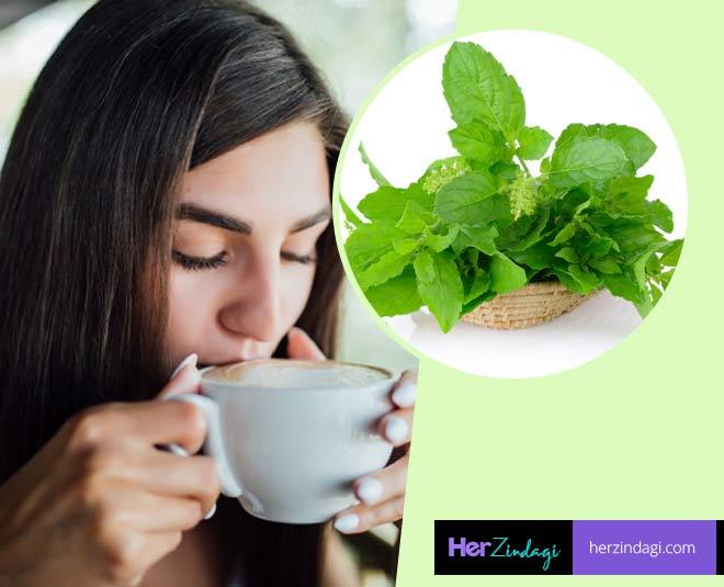 tulsi tea benefits main