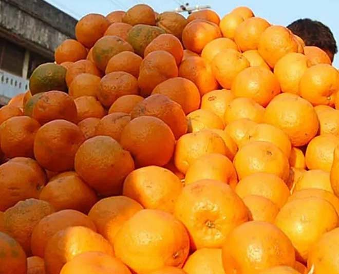 Manipur Special Oranges And Chillies get GI Tag Know Details